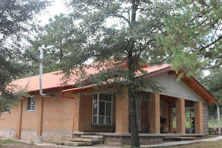 Cabaña Navios Durango