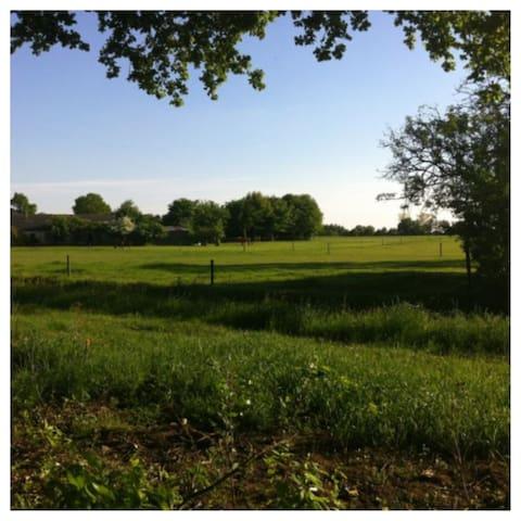 Voordelig chalet huren in Twente - Den Ham - Chalet