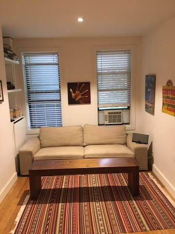 Amazing Location! Apartment in South Williamsburg