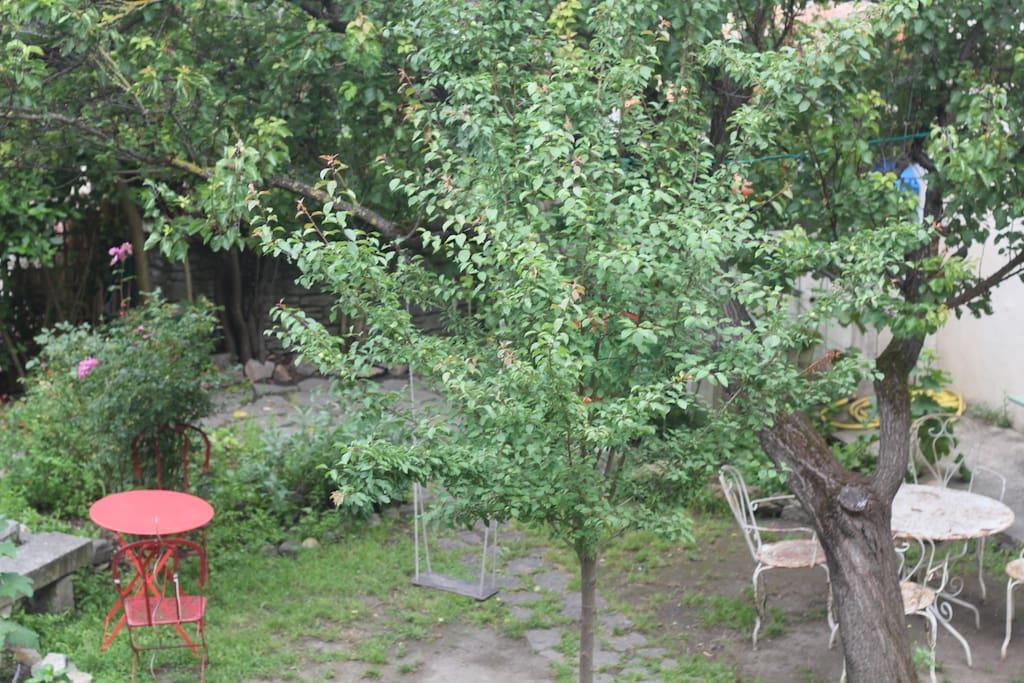 Le jardin sous les remparts