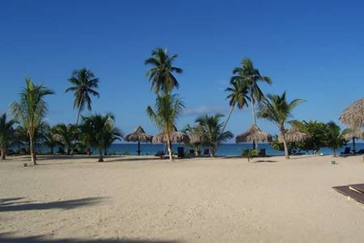 Welcome to the Dominican Caribbean Paradise Beach
