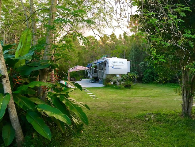 Fort Myers Private Tropical Setting RV, 2bd - Fort Myers - Camper/RV