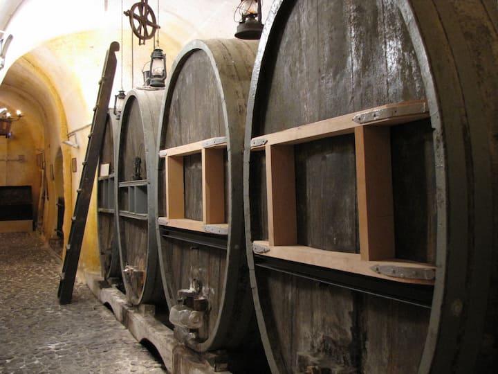 FIRST OAK BARRELS @ Wine Museum.