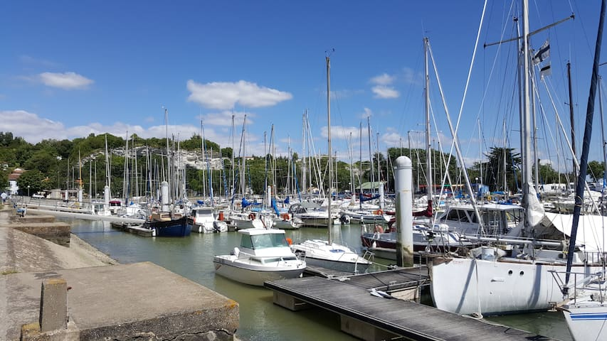 "Escapade entre ""Terre et Eau"". - Mortagne-sur-Gironde - Wohnung"