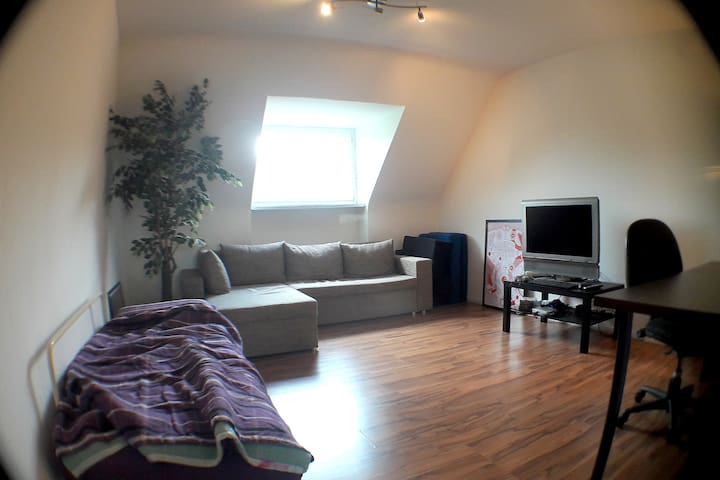 Cozy private room for 3 near city center!
