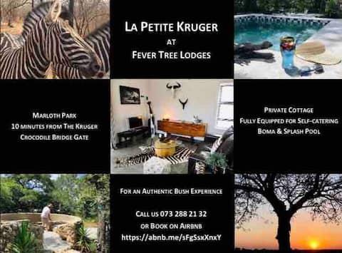 Girafe Zebra Lion: Safari en brousse @ La Petite Kruger