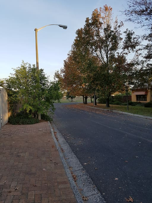 Street view in quiet crescent