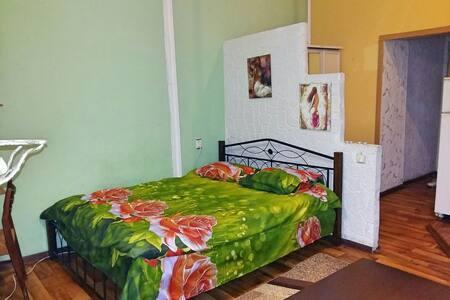 Уютная квартира-студио в центре Одессы. - Odesa - Appartamento