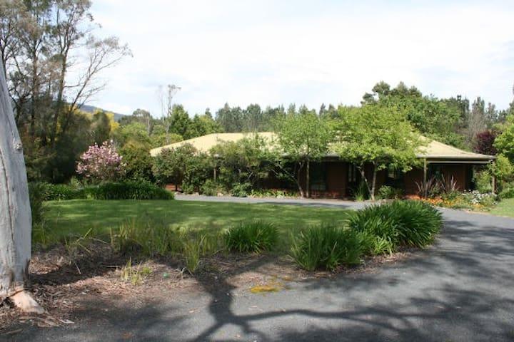 'Gum Tree Glen' - Kangaroo Valley