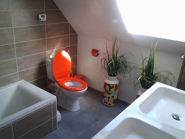 salle de bain, toilettes et toilette indépendant au rez de chaussée