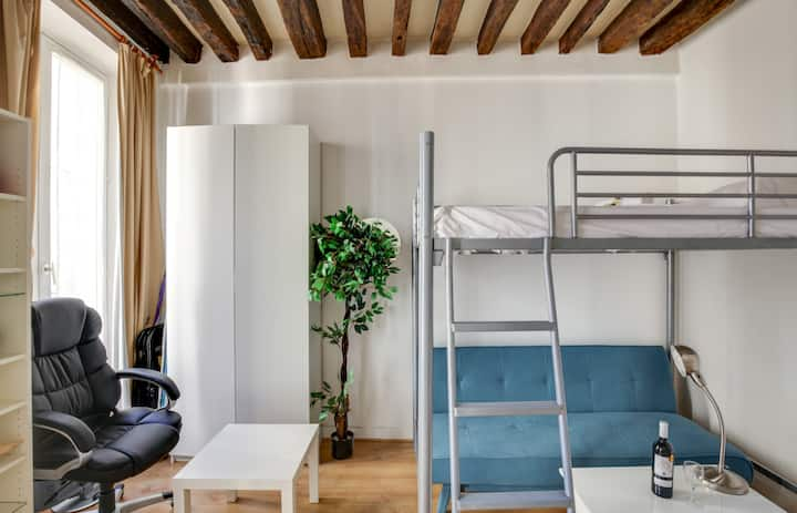 Cozy Studio with Netflix near Le Marais