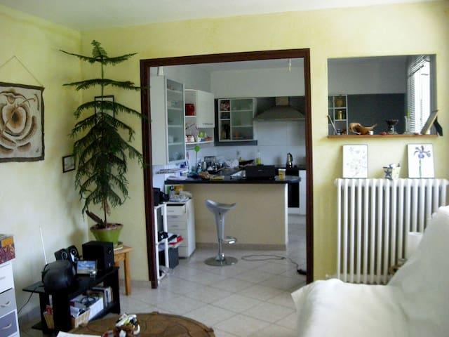 appartement au sud des hautes alpes - Laragne-Montéglin - Huoneisto