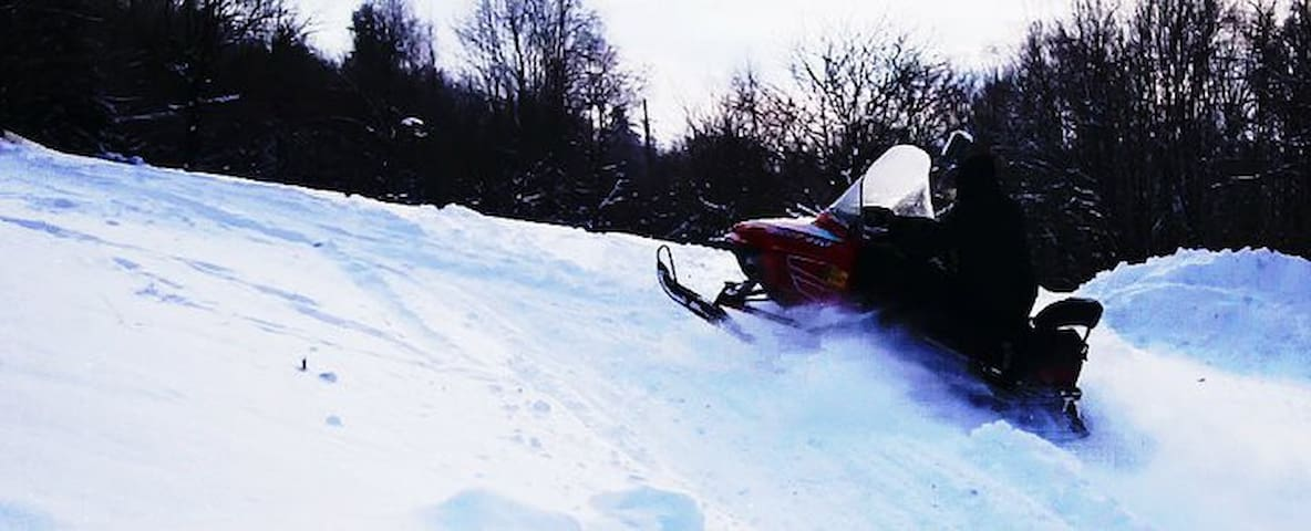 Snowmobile on local trails.