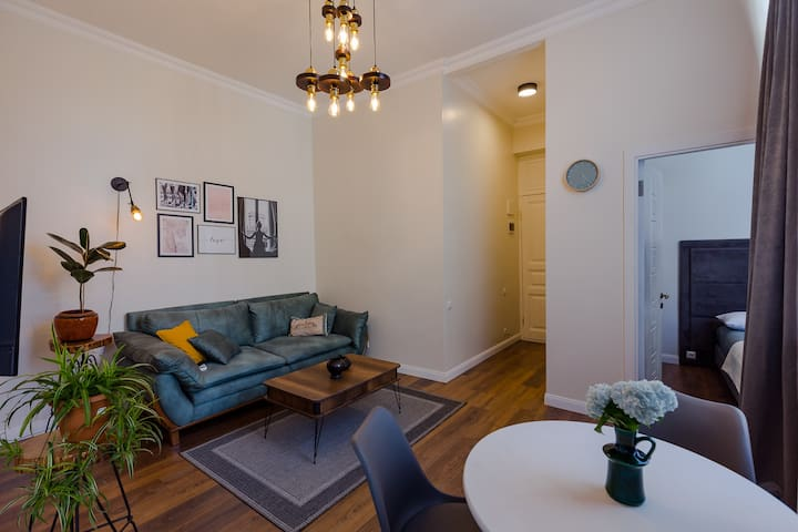 Stylish 1 BR apartment in a Historical Building