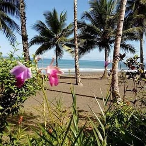 CABAÑAS PLAYA TERCO SURF -Nuquí