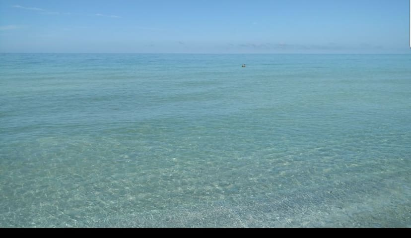 The views and the water are spectacular.  You can see dolphin playing off teh shore