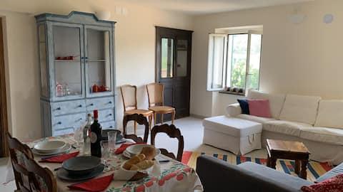 Michi's flat-following Airbnb sanitizing protocol!