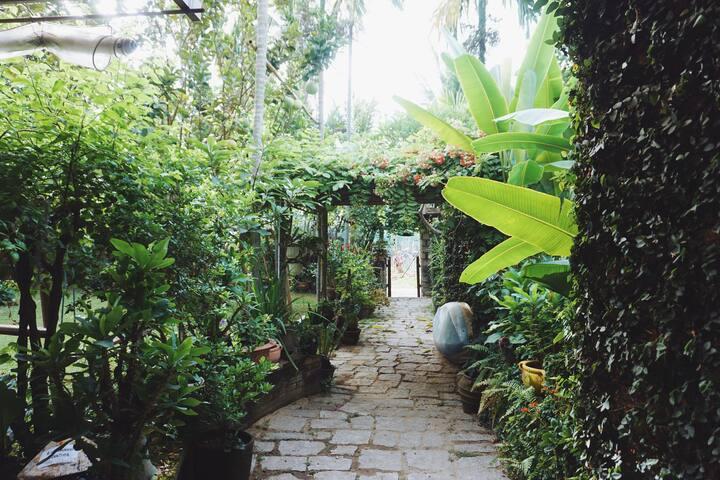Suite  Terrace -Rock villa Hoi An