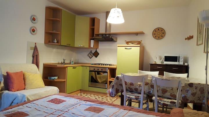 Cosy and spacious studio apartment