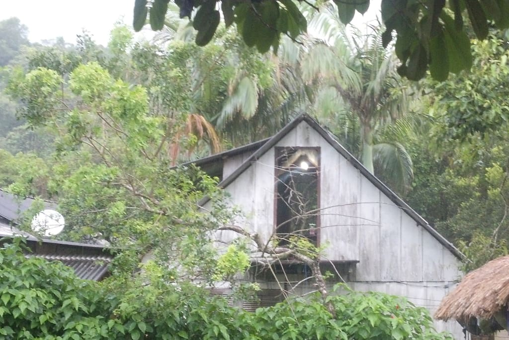 Fundos da casinha.