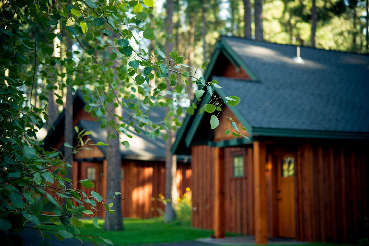 Enjoy One of Our 36 Luxury Fireplace Cabins!