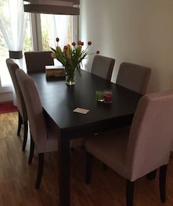 Great 2-bedroom flat 15min from Zurich centre - Zürich - Apartmen