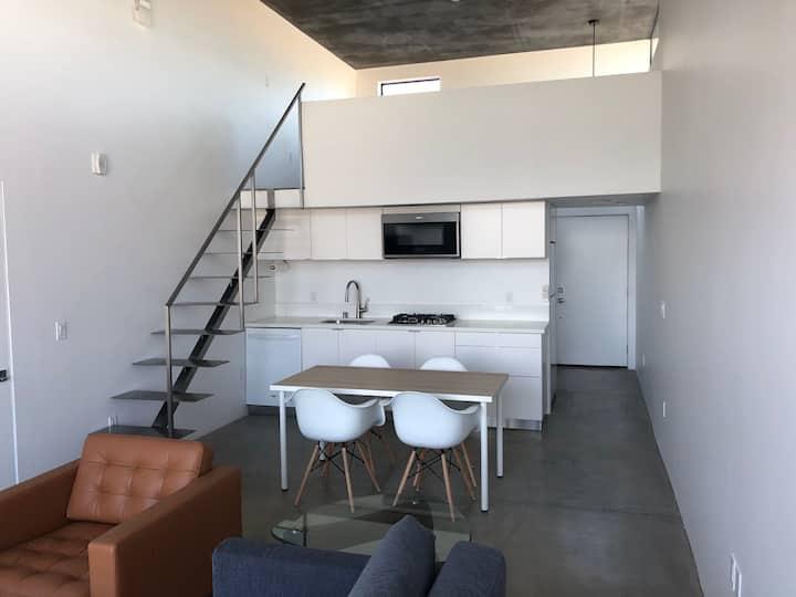Penthouse Loft in Ultra Modern Building
