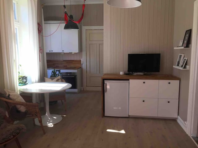 Apartment with 2 bedrooms, Old Town Fredikstad