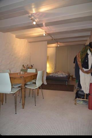 Studio in Nidau - Nidau - Apartment
