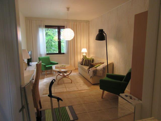 Cosy 2 rooms apartment in Kuopio, Finland - Kuopio - Apartamento