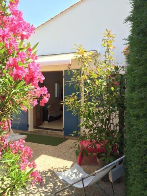 Vue du jardin depuis l'accès