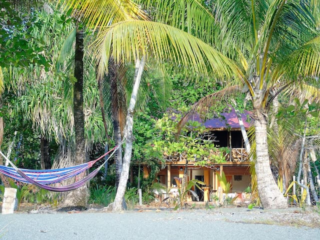 Jungle and beach - Puerto Jimenez - Inap sarapan