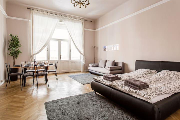 Spacious apartment with balcony near Oktogon
