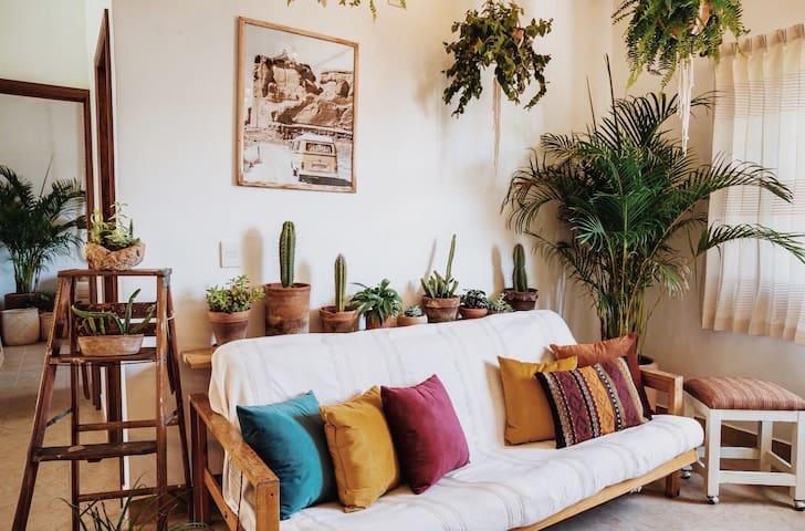 Oaxaca Home   Cozy in a quiet neighborhood