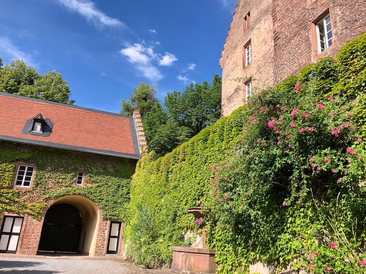 Idyllische Gästewohnung im Burghof der Mittelburg