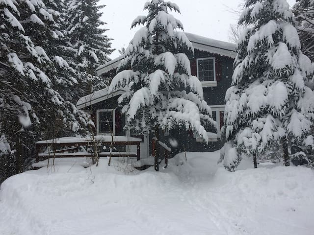 Wanderwood: Gorgeous Chalet near Jay Peak Resort - Westfield - Faház