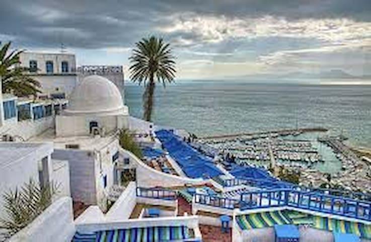Hammamet an Tunisia's  Travel guidebook