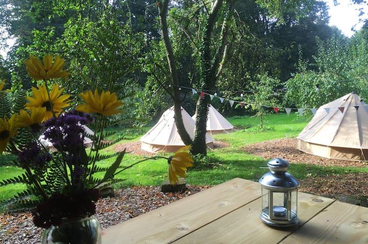 Walled Garden Glamping - Tisbury - Tenda