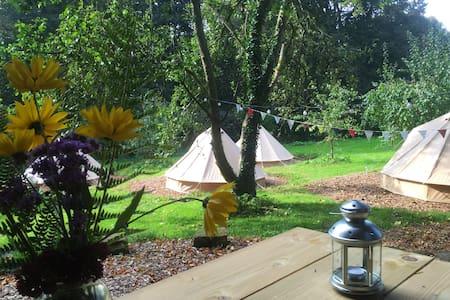 Walled Garden Glamping - Tisbury - Tente