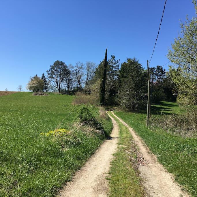chemin privé vers la maison