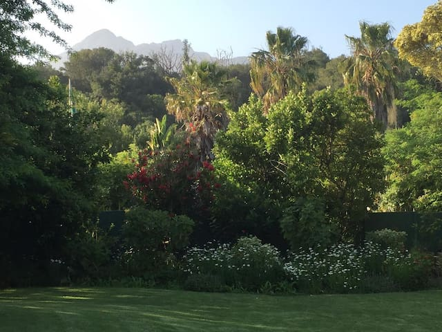 Garden-mountain view from cottage