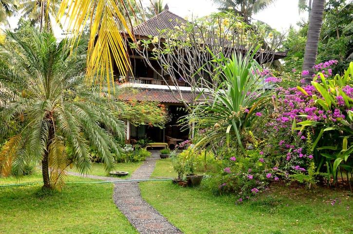 Tropisches Paradies direkt am Lava-Strand