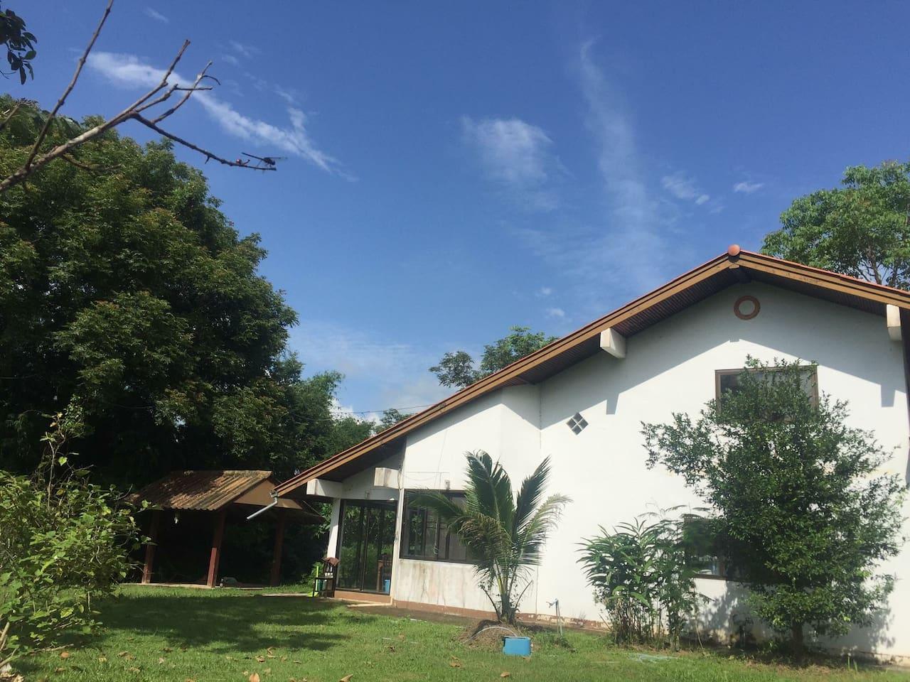 บ้านอยู่บนดอย บนพื้นที่ เกือบ35 ไร่ ไม่มีเพื่อนบ้านมาวุ่นวาย ด้านหลังคือป่า    The hut is nice for relaxing.