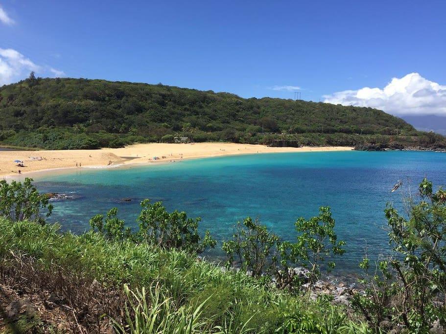 We are just a 10 minute drive to the famous Waimea Beach