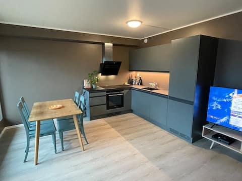 Modern apartment central in Lofoten