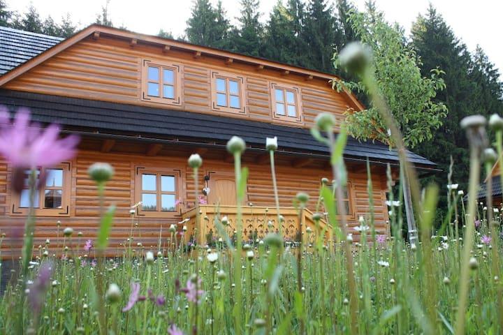 Chalet - Drevenica pri Hajenke - Zázrivá - Bungalo