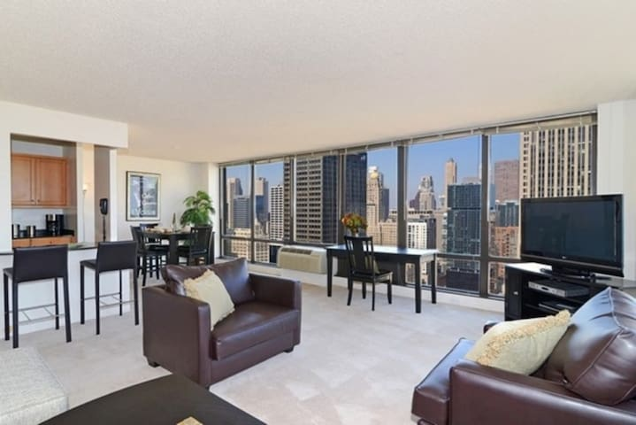 Downtown Streeterville Large 1 bedroom Apartment