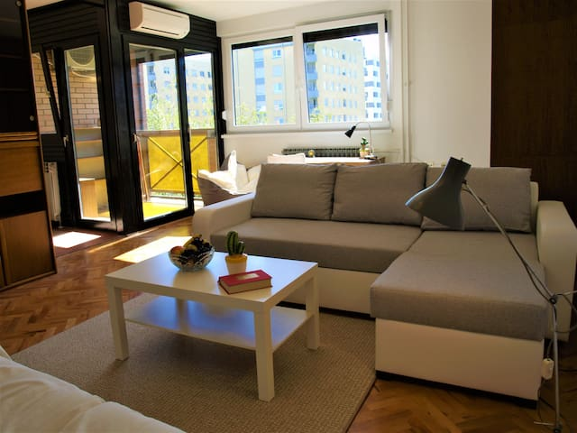 Cozy and afordable apartment for you