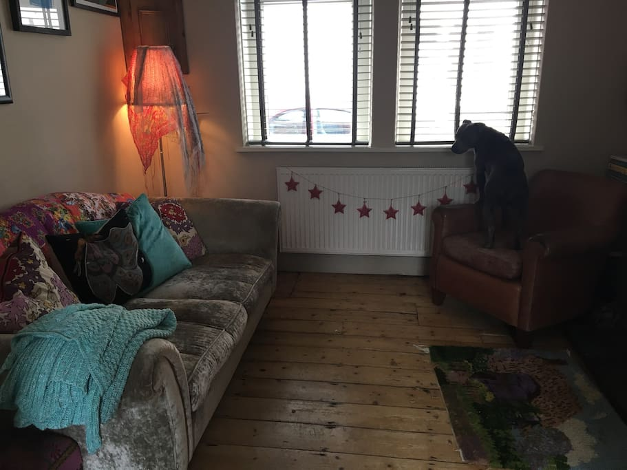 Living room complete with dog