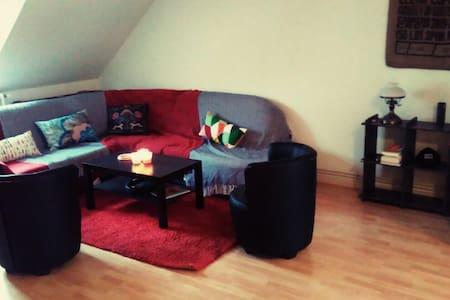 Appartement calme pour Noël alsacien... - Mulhouse